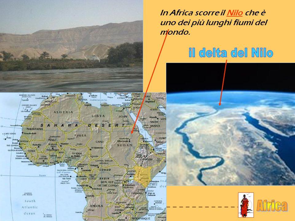 il delta del Nilo Africa
