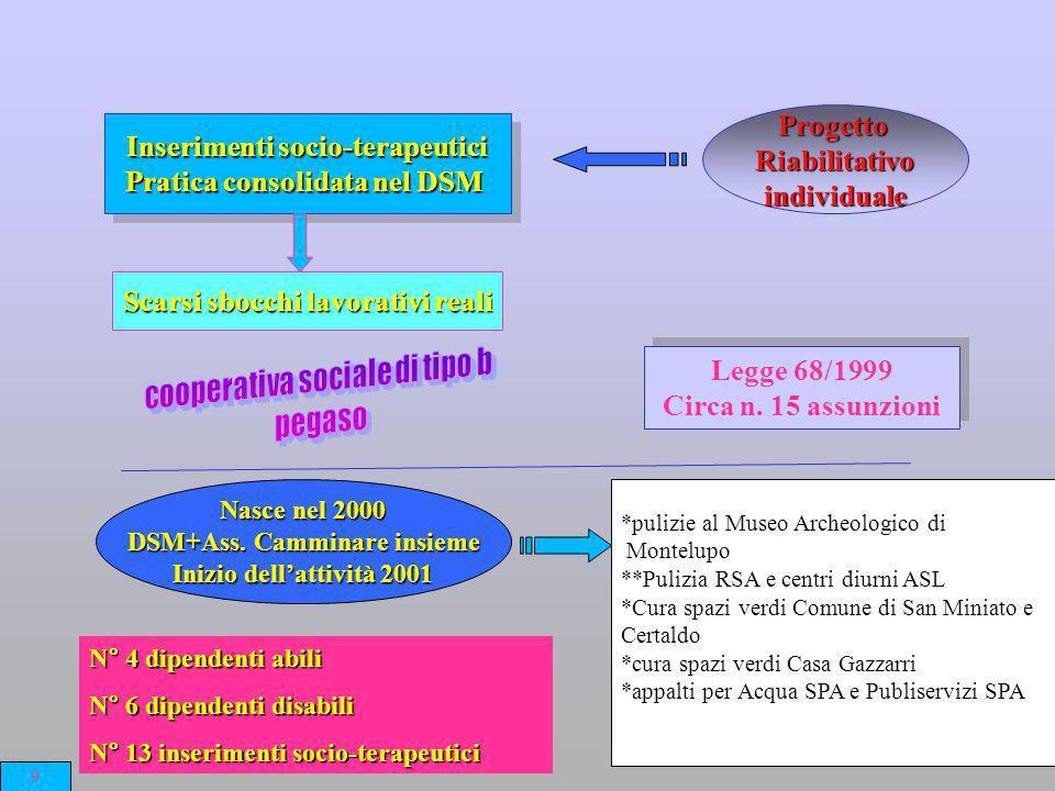 Inserimenti socio-terapeutici Pratica consolidata nel DSM