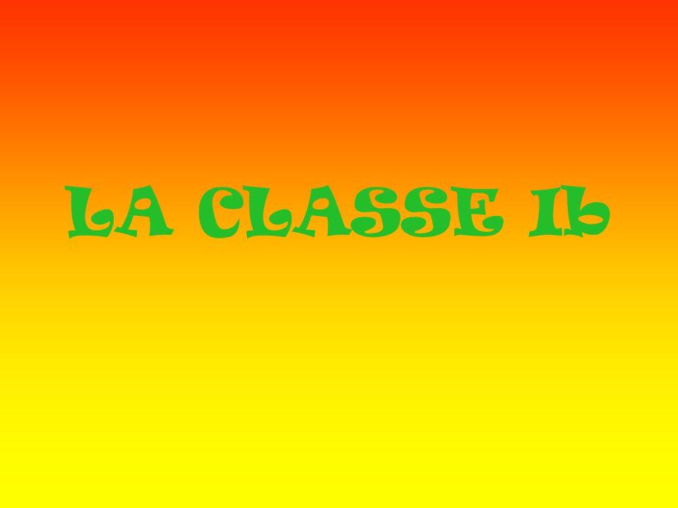 LA CLASSE Ib