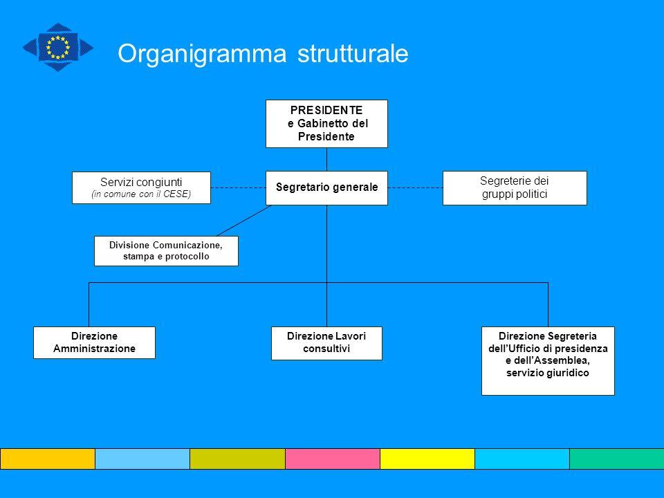 Organigramma strutturale