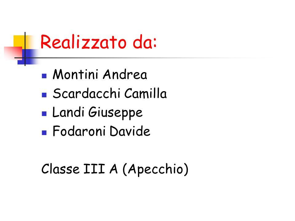Realizzato da: Montini Andrea Scardacchi Camilla Landi Giuseppe
