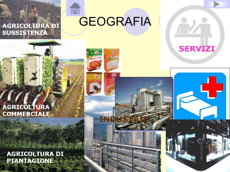 GEOGRAFIA SERVIZI INDUSTRIE AGRICOLTURA DI SUSSISTENZA