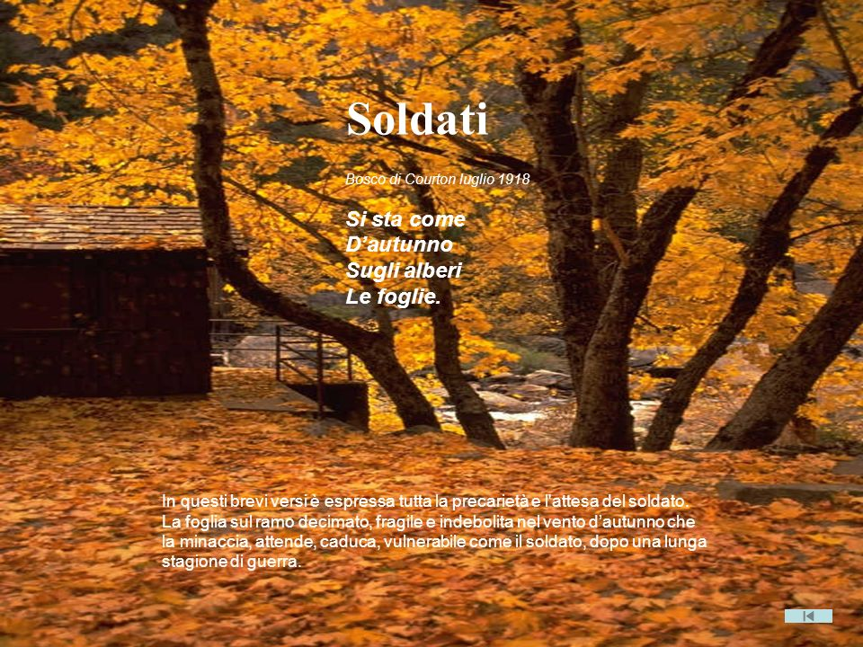 Soldati Si sta come D'autunno Sugli alberi Le foglie.