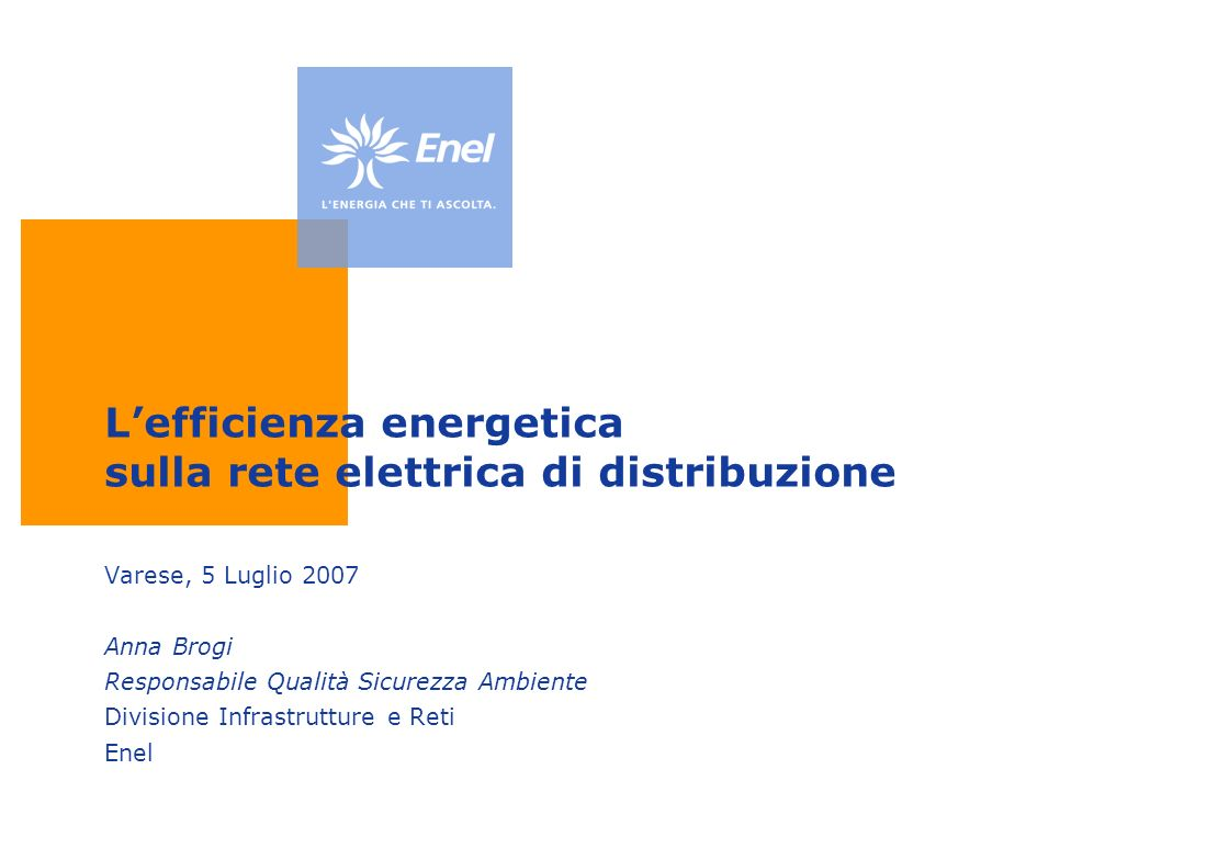 L'efficienza energetica sulla rete elettrica di distribuzione