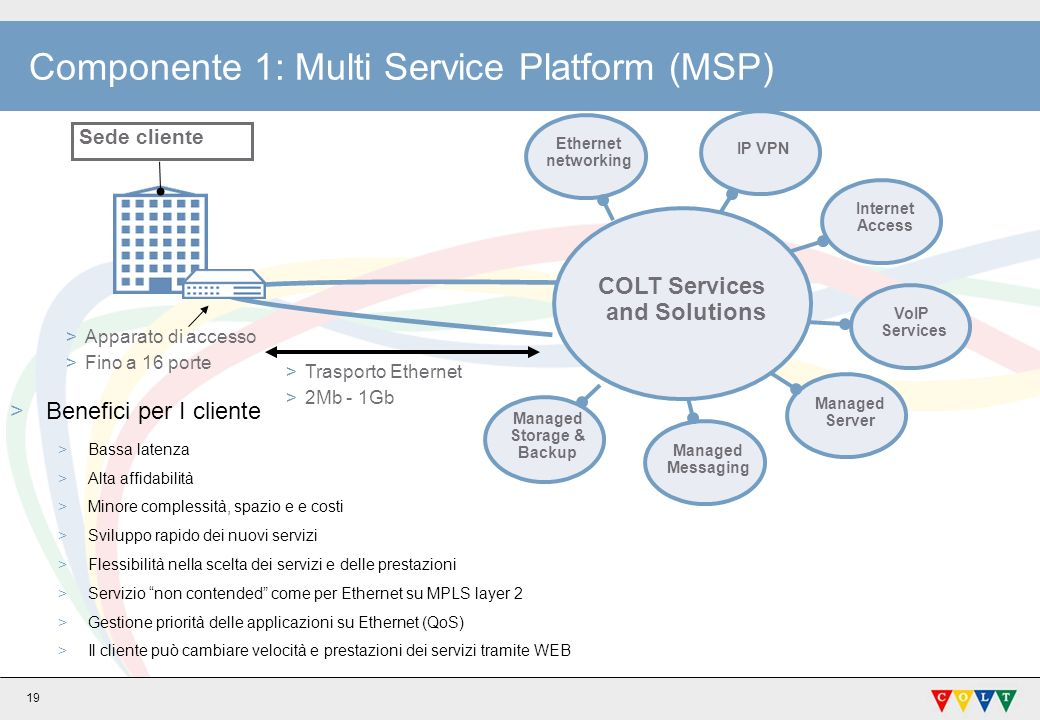 Componente 1: Multi Service Platform (MSP)