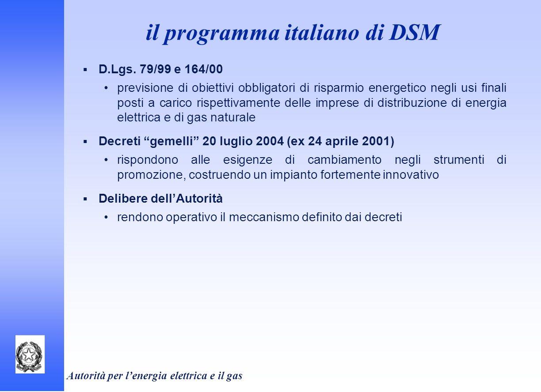 il programma italiano di DSM