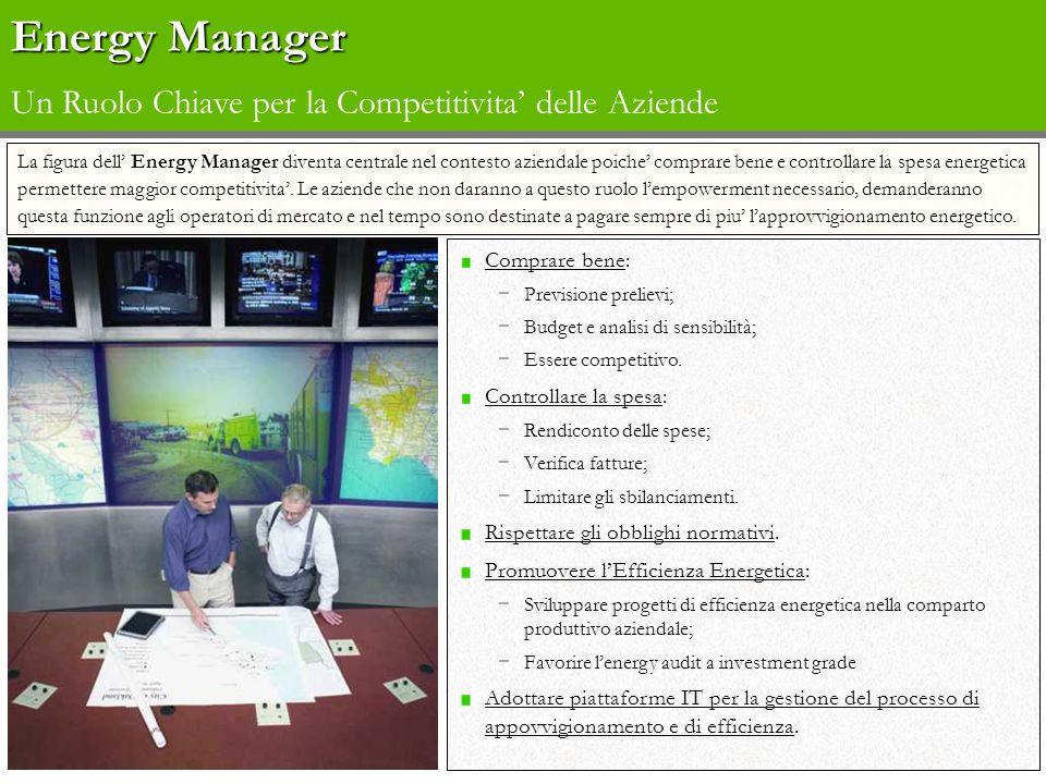 Energy Manager Un Ruolo Chiave per la Competitivita' delle Aziende