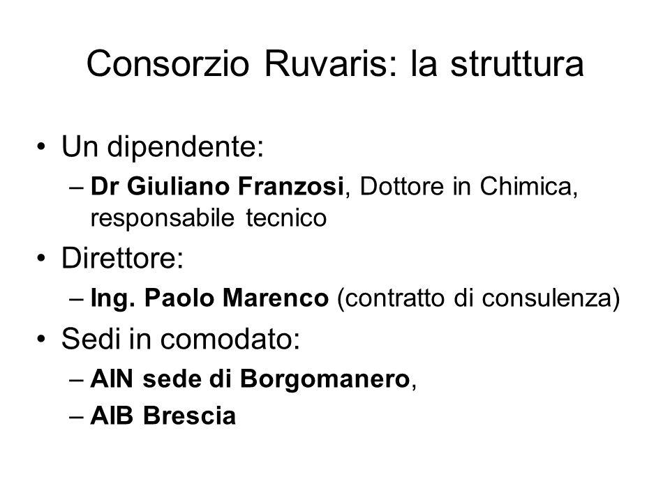 Consorzio Ruvaris: la struttura