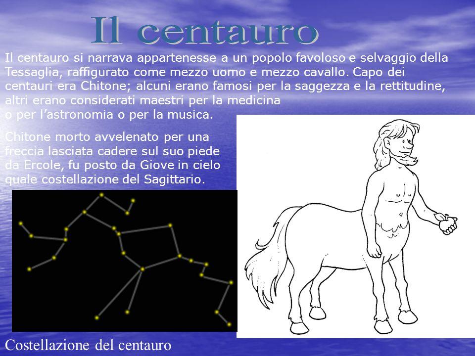 Il centauro Costellazione del centauro