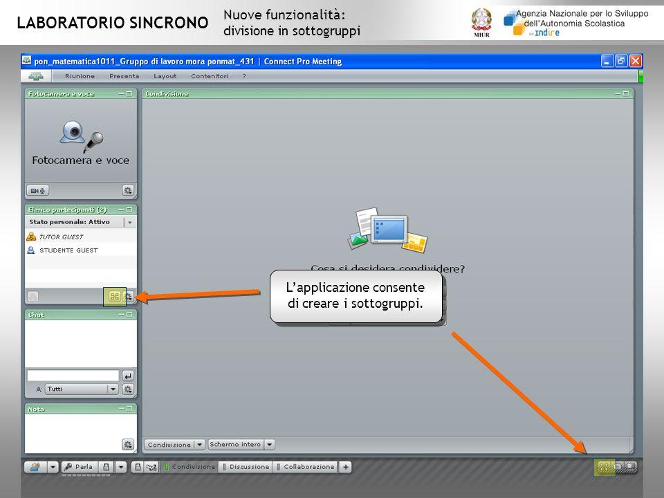 L'applicazione consente di creare i sottogruppi.