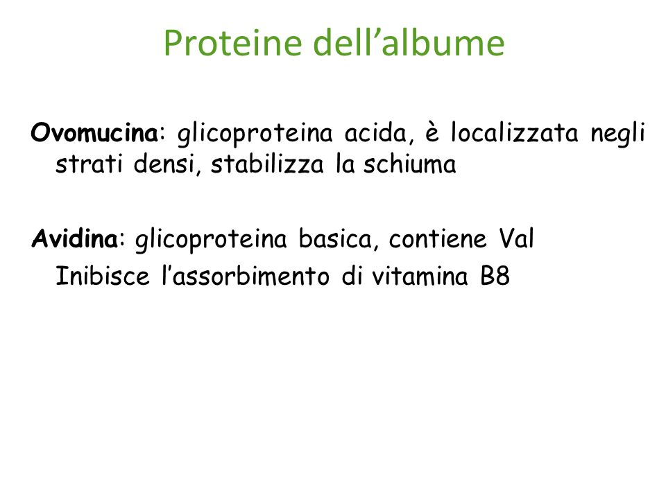 Proteine dell'albume Ovomucina: glicoproteina acida, è localizzata negli strati densi, stabilizza la schiuma.