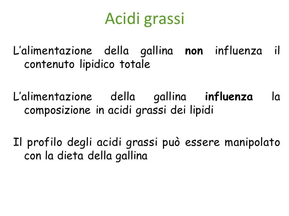 Acidi grassi L'alimentazione della gallina non influenza il contenuto lipidico totale.