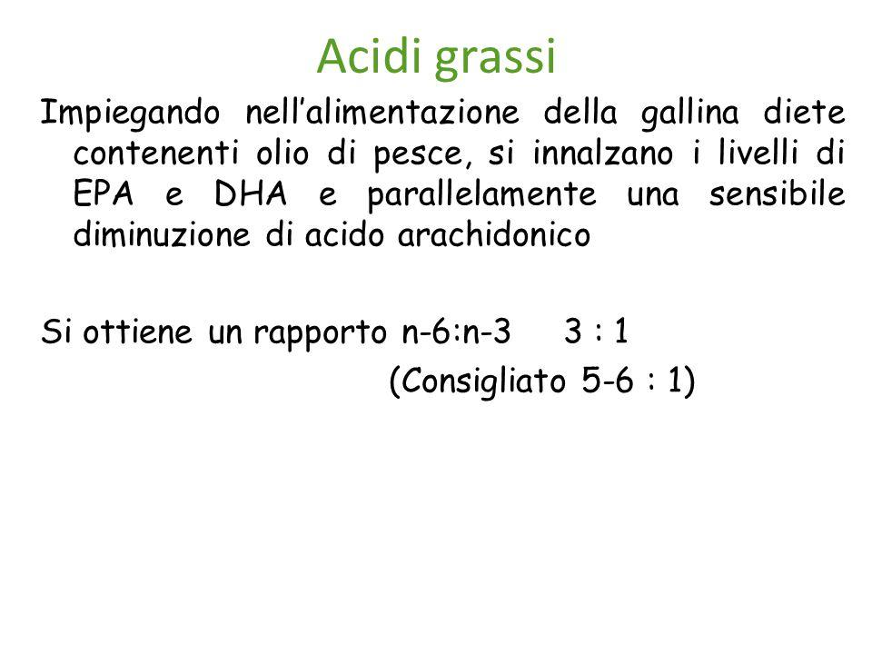 Acidi grassi