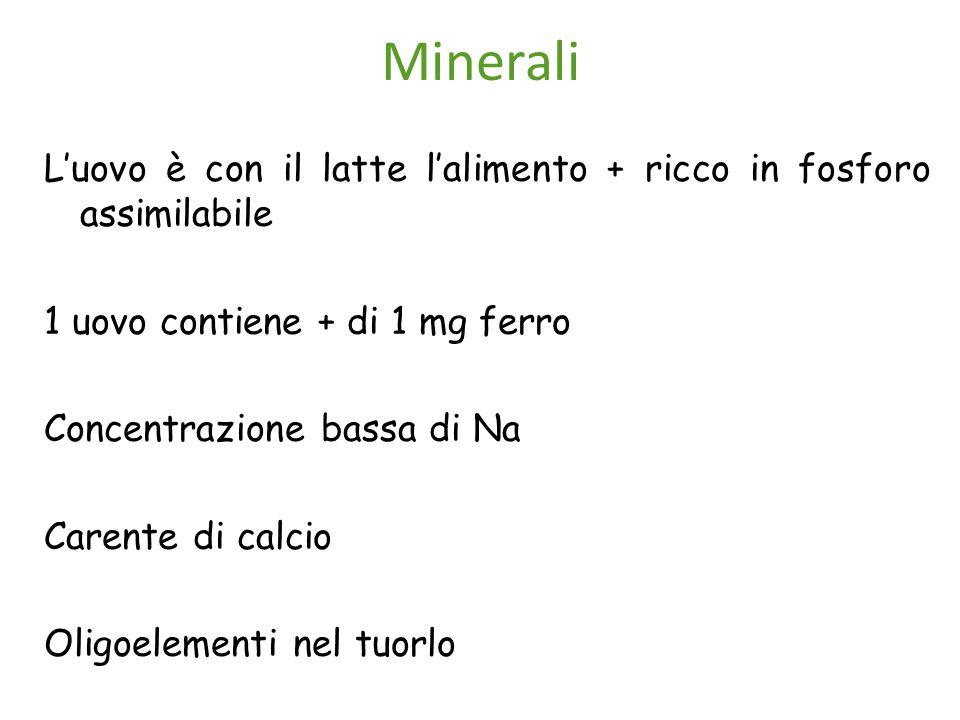Minerali L'uovo è con il latte l'alimento + ricco in fosforo assimilabile. 1 uovo contiene + di 1 mg ferro.