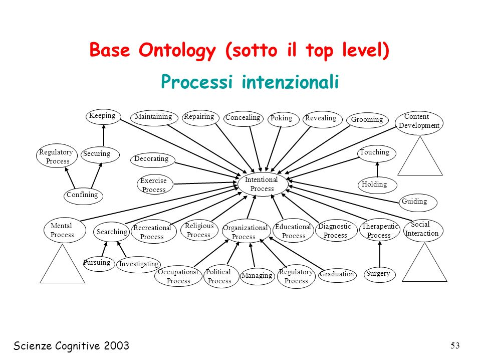 Base Ontology (sotto il top level)