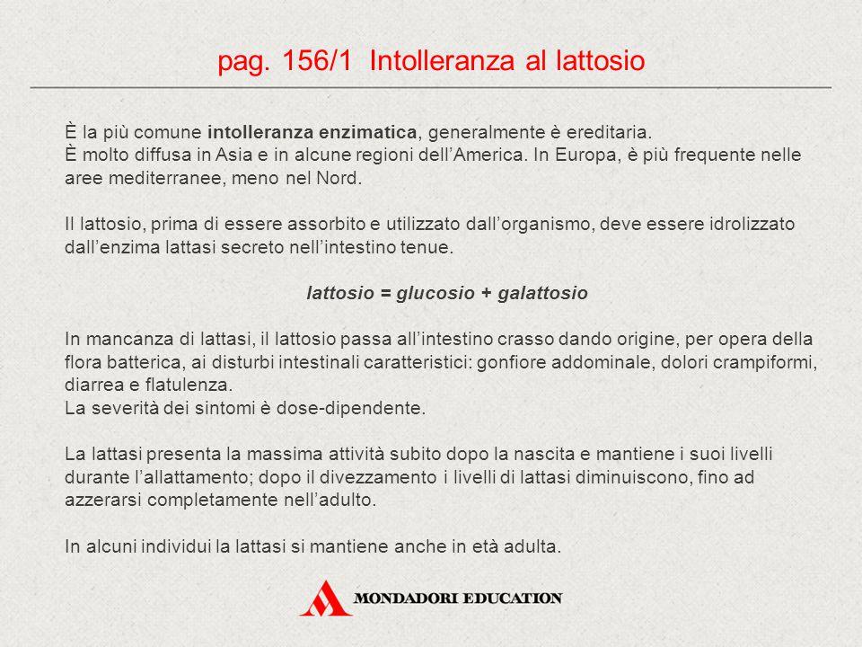 lattosio = glucosio + galattosio