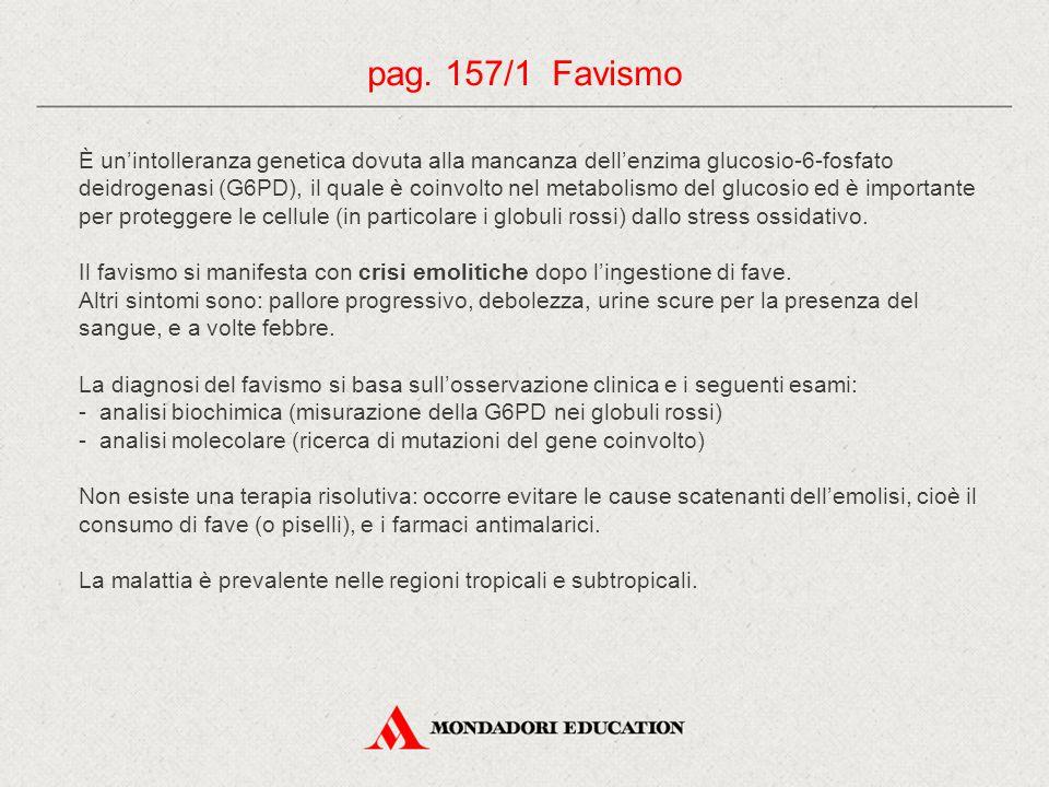 pag. 157/1 Favismo