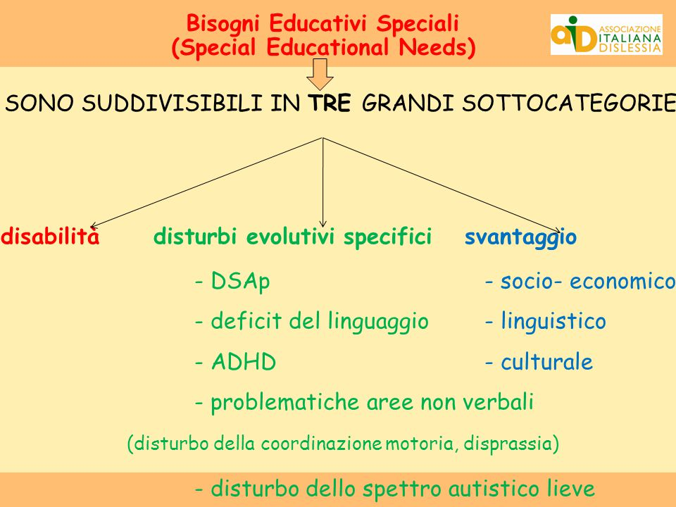 Bisogni Educativi Speciali (Special Educational Needs)