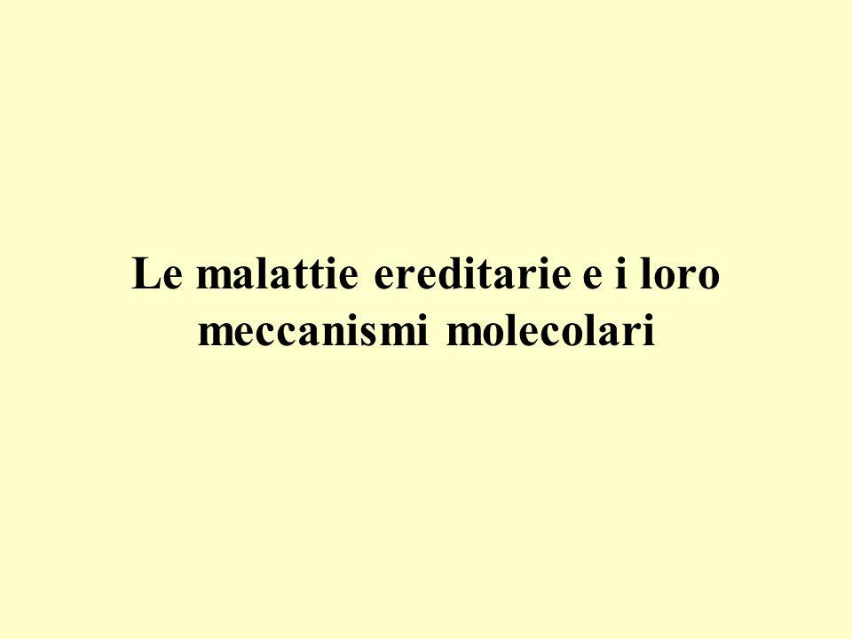 Le malattie ereditarie e i loro meccanismi molecolari