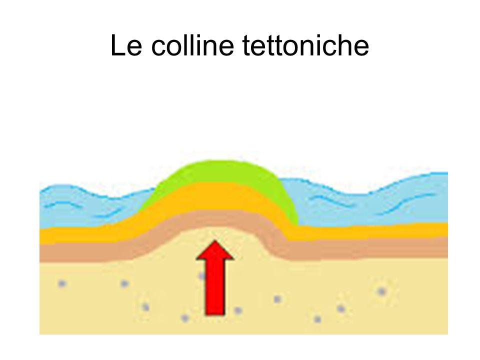 Le colline tettoniche