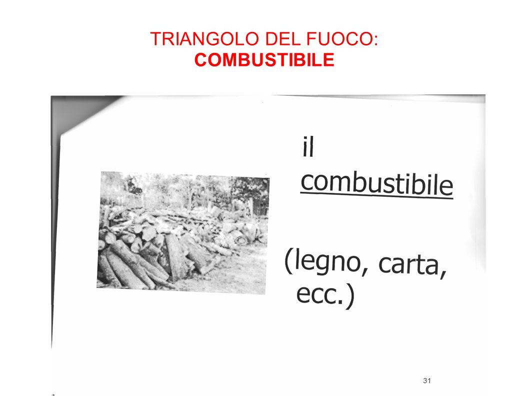 TRIANGOLO DEL FUOCO: COMBUSTIBILE