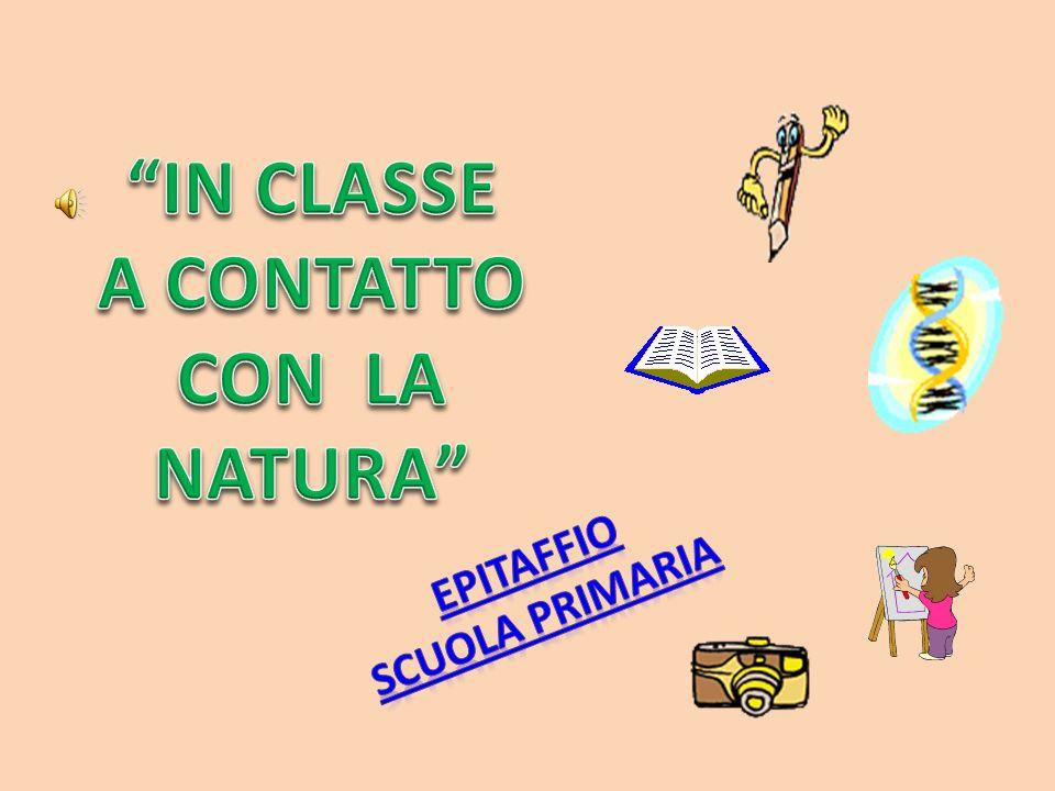 IN CLASSE A CONTATTO CON LA NATURA