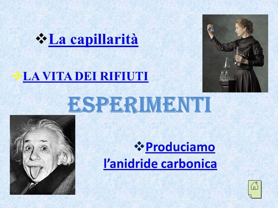 Esperimenti La capillarità Produciamo l'anidride carbonica