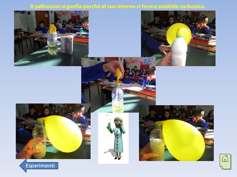 Il palloncino si gonfia perché al suo interno si forma anidride carbonica.