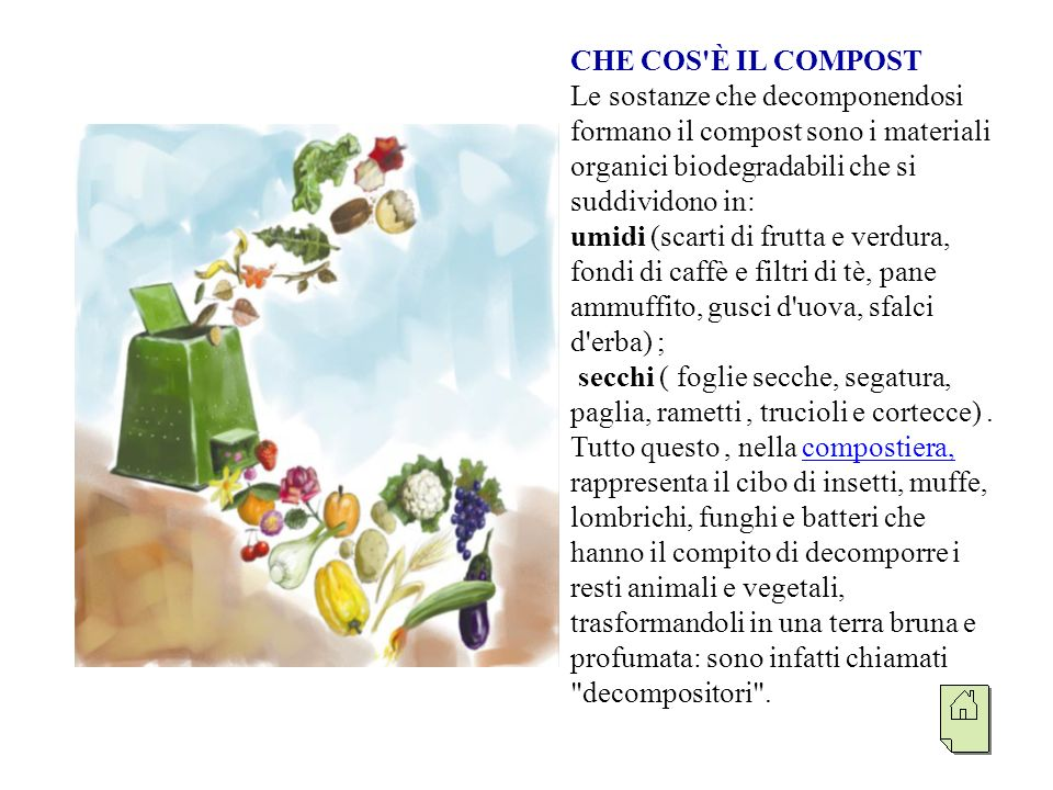 CHE COS È IL COMPOST Le sostanze che decomponendosi formano il compost sono i materiali organici biodegradabili che si suddividono in: