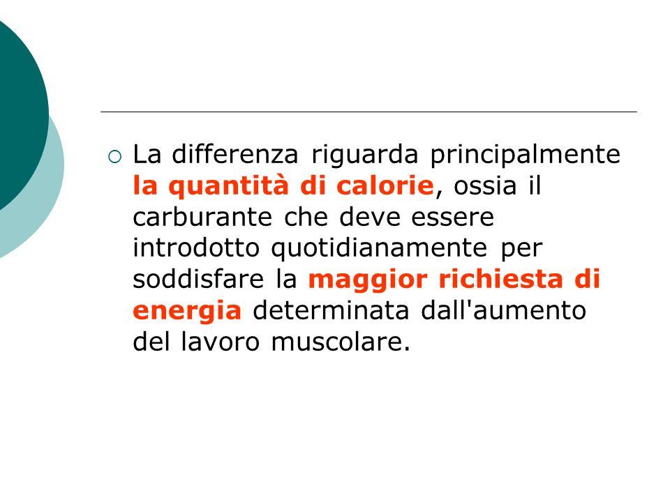 La differenza riguarda principalmente la quantità di calorie, ossia il carburante che deve essere introdotto quotidianamente per soddisfare la maggior richiesta di energia determinata dall aumento del lavoro muscolare.