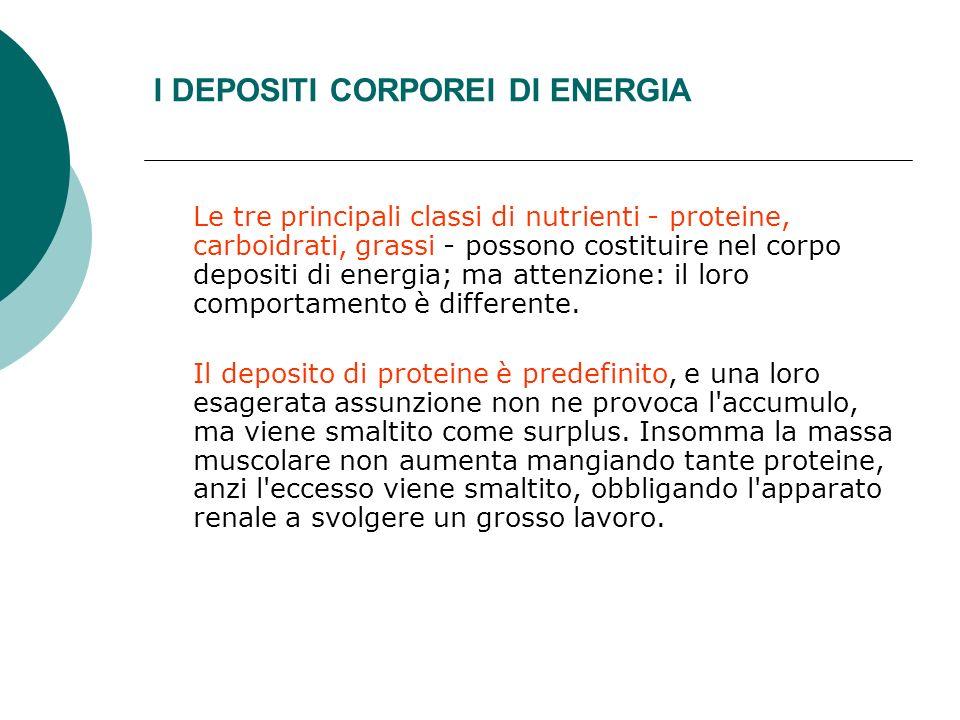 I DEPOSITI CORPOREI DI ENERGIA