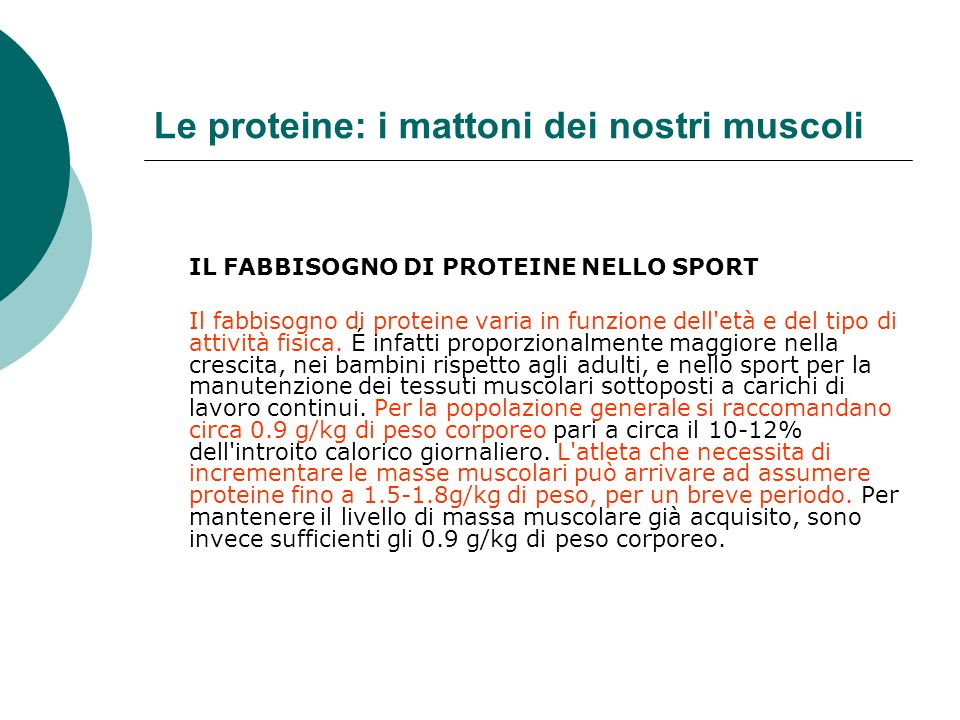 Le proteine: i mattoni dei nostri muscoli