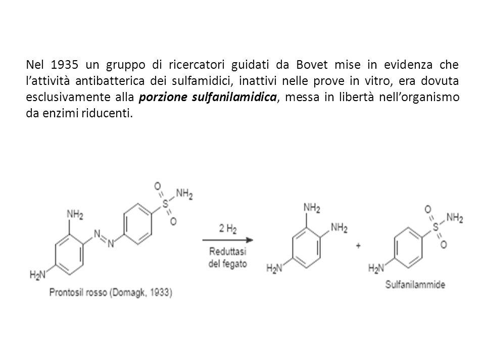 Nel 1935 un gruppo di ricercatori guidati da Bovet mise in evidenza che l'attività antibatterica dei sulfamidici, inattivi nelle prove in vitro, era dovuta esclusivamente alla porzione sulfanilamidica, messa in libertà nell'organismo da enzimi riducenti.