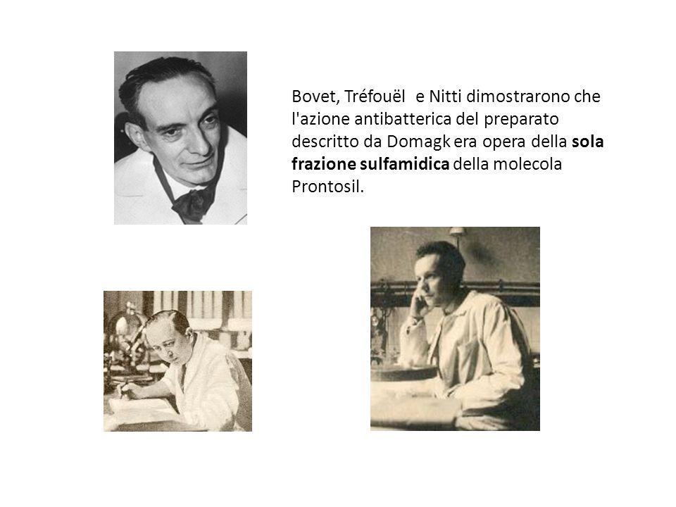 Bovet, Tréfouël e Nitti dimostrarono che l azione antibatterica del preparato descritto da Domagk era opera della sola frazione sulfamidica della molecola Prontosil.