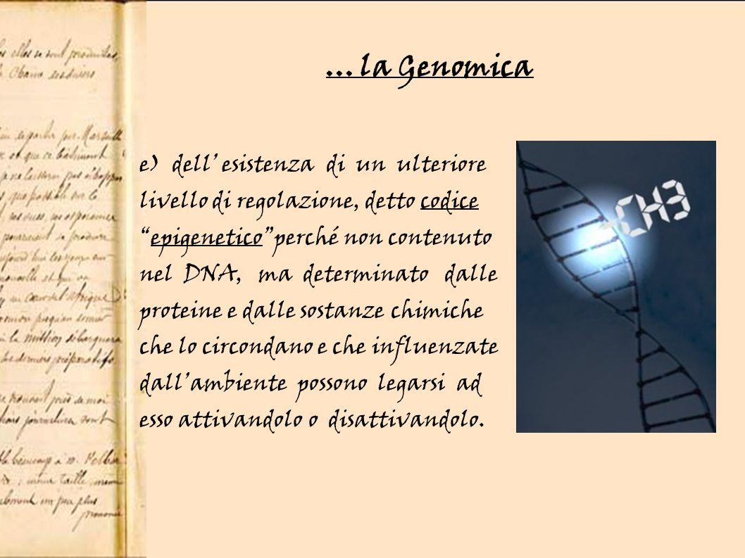 ... la Genomica e) dell' esistenza di un ulteriore livello di regolazione, detto codice. epigenetico perché non contenuto.