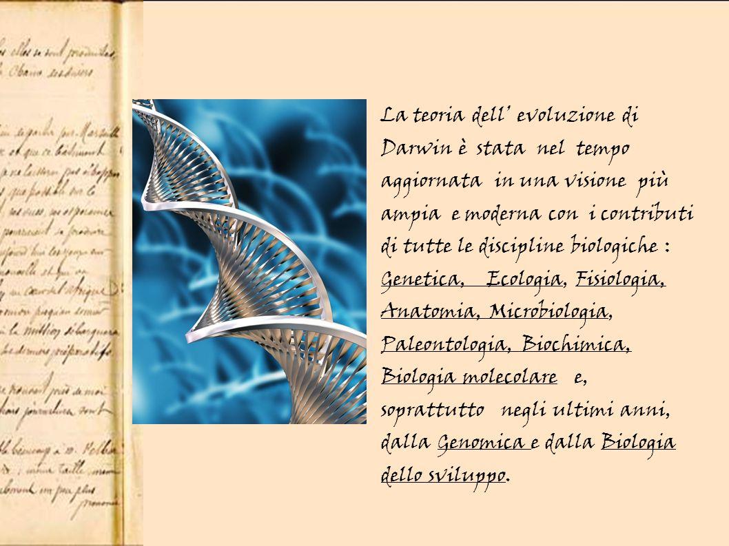 La teoria dell' evoluzione di Darwin è stata nel tempo aggiornata in una visione più ampia e moderna con i contributi di tutte le discipline biologiche : Genetica, Ecologia, Fisiologia, Anatomia, Microbiologia, Paleontologia, Biochimica, Biologia molecolare e, soprattutto negli ultimi anni, dalla Genomica e dalla Biologia dello sviluppo.