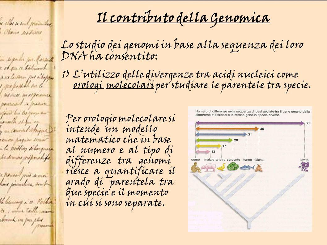 Il contributo della Genomica