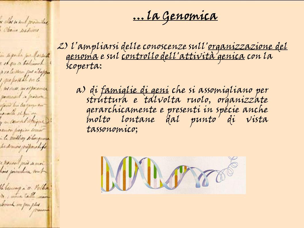 ... la Genomica 2) l'ampliarsi delle conoscenze sull organizzazione del. genoma e sul controllo dell attività genica con la.
