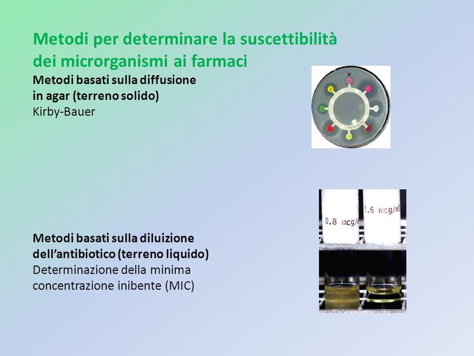 Metodi per determinare la suscettibilità dei microrganismi ai farmaci