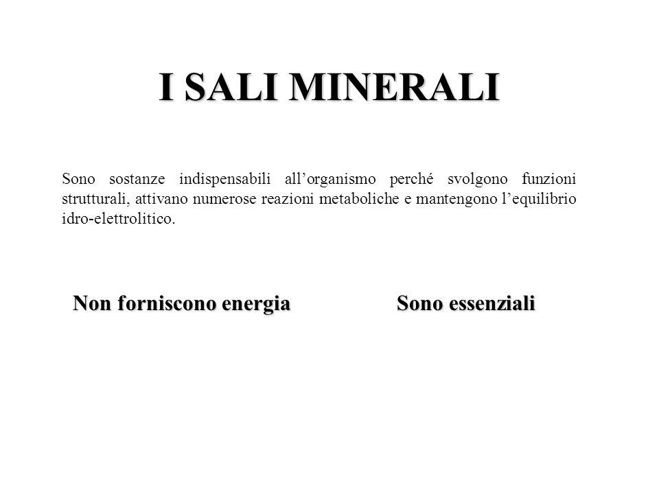 I SALI MINERALI Non forniscono energia Sono essenziali