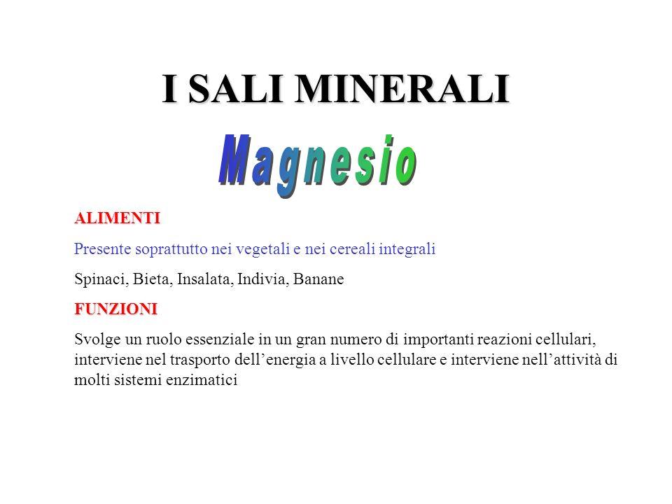 I SALI MINERALI Magnesio ALIMENTI