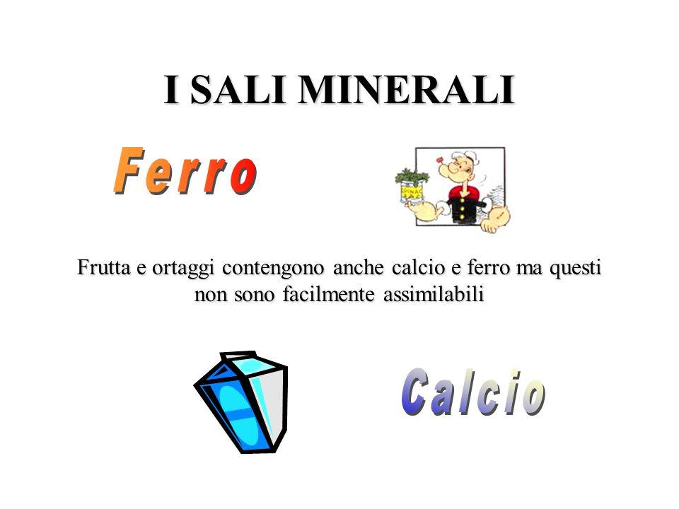 I SALI MINERALI Ferro Calcio