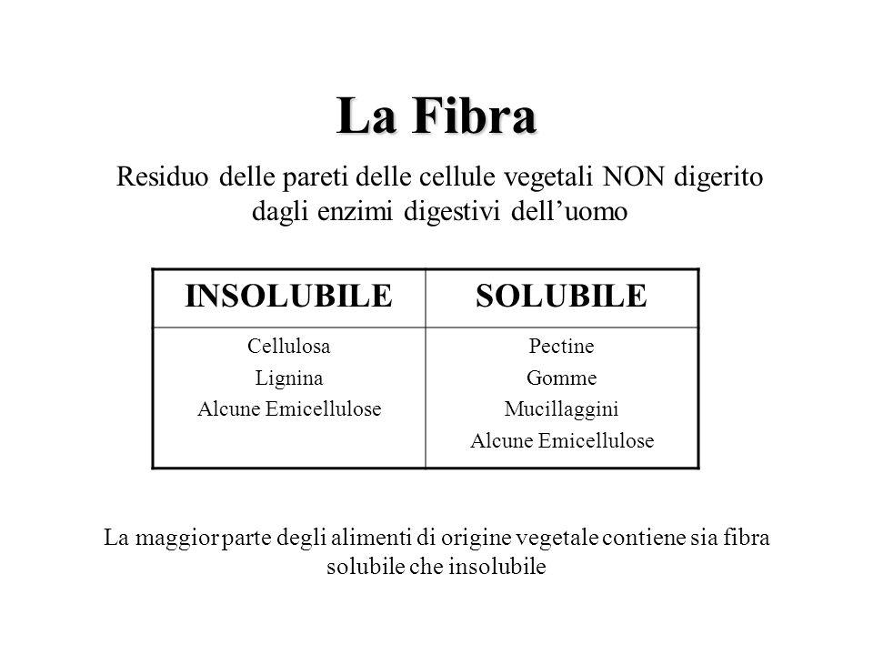 La Fibra INSOLUBILE SOLUBILE