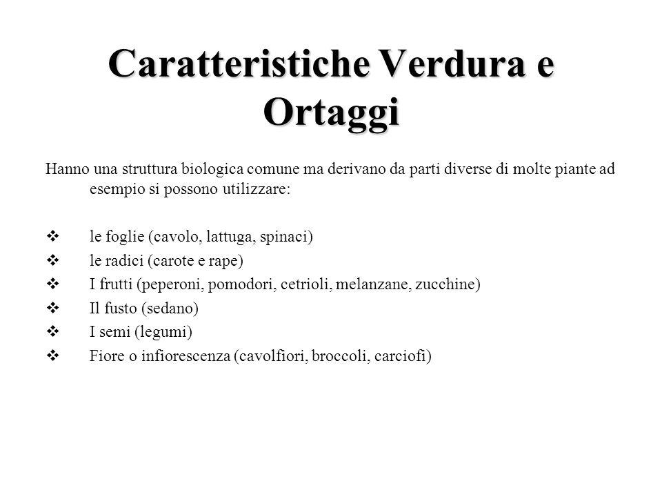 Caratteristiche Verdura e Ortaggi