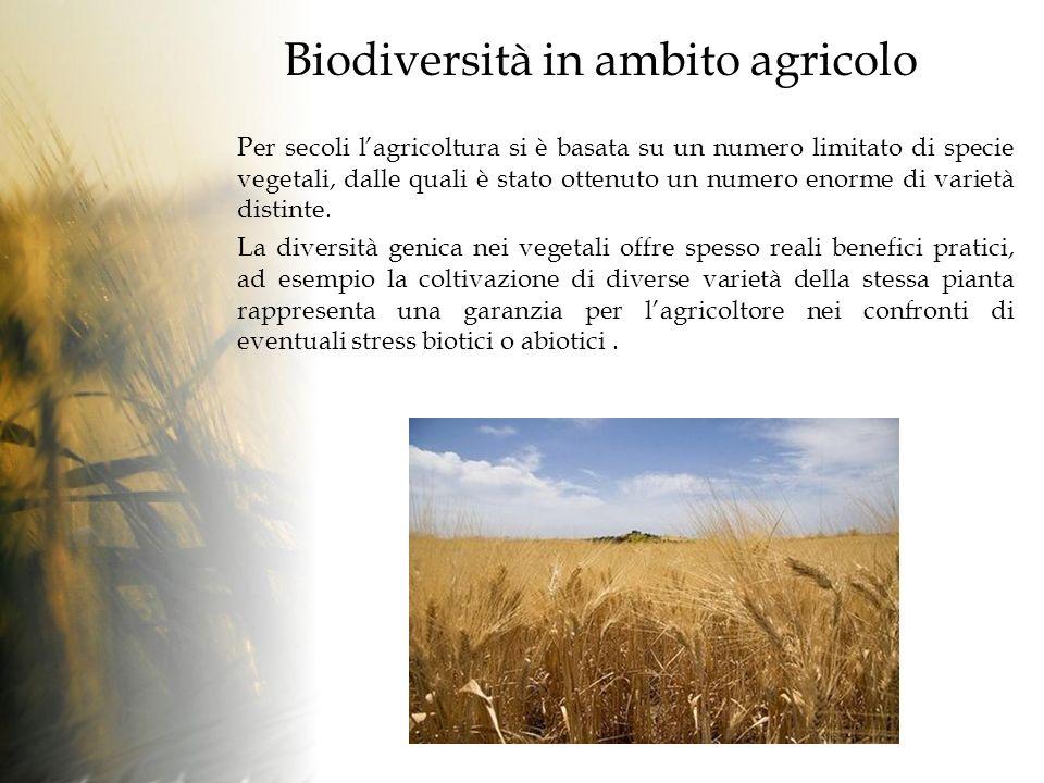 Biodiversità in ambito agricolo