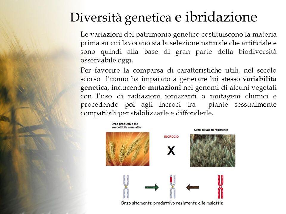 Diversità genetica e ibridazione