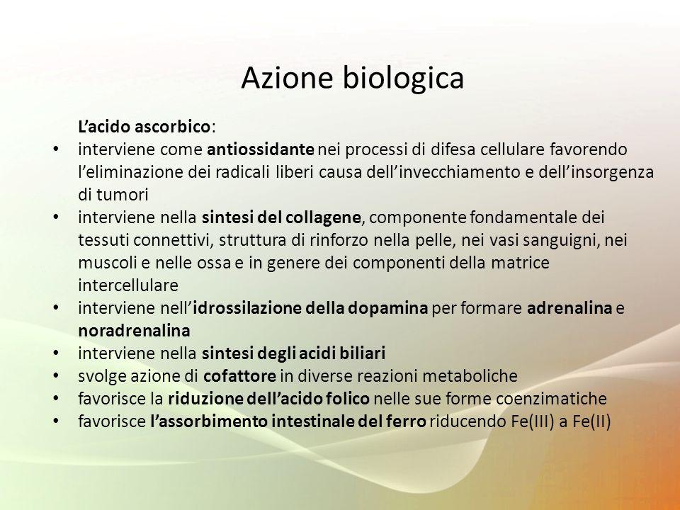 Azione biologica L'acido ascorbico: