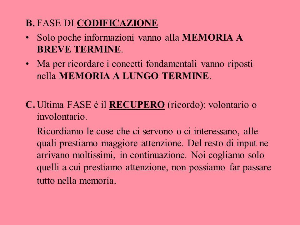 B. FASE DI CODIFICAZIONE