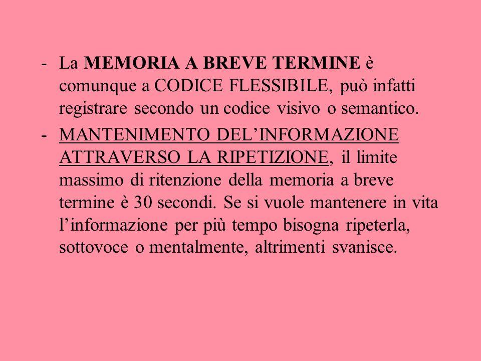 La MEMORIA A BREVE TERMINE è comunque a CODICE FLESSIBILE, può infatti registrare secondo un codice visivo o semantico.