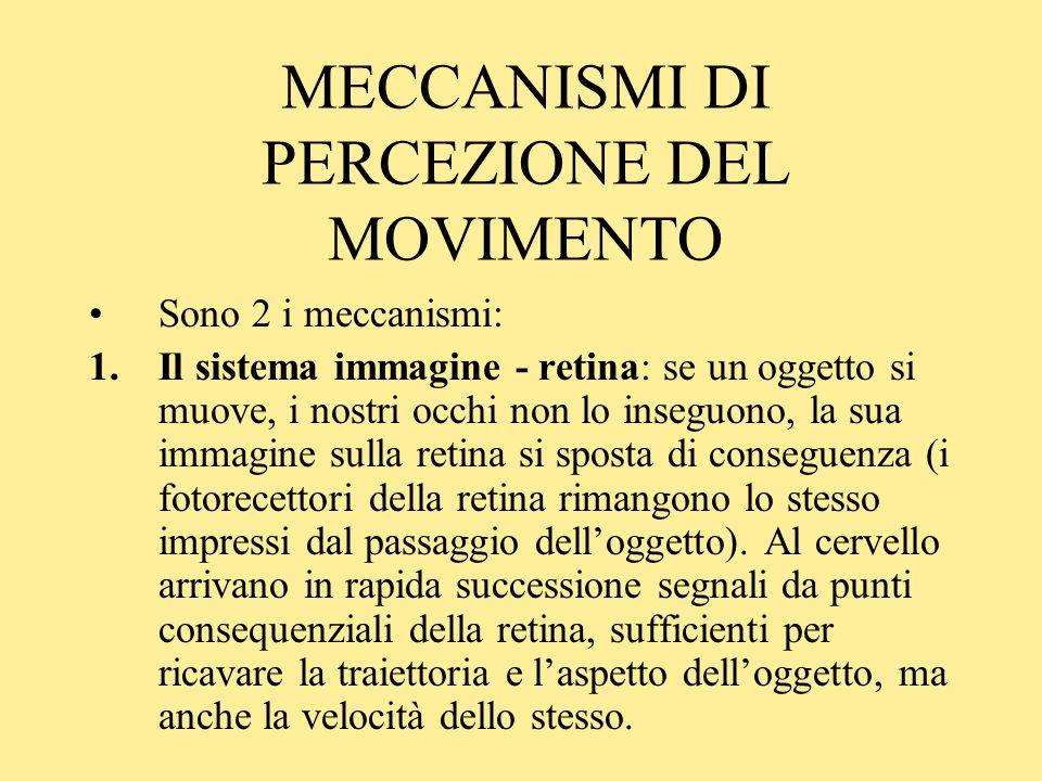 MECCANISMI DI PERCEZIONE DEL MOVIMENTO